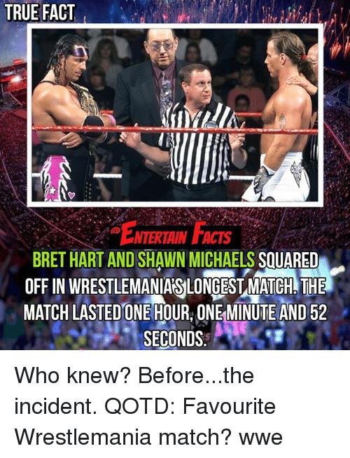 Bret Hart And Shawn Shawn Michaels Meme