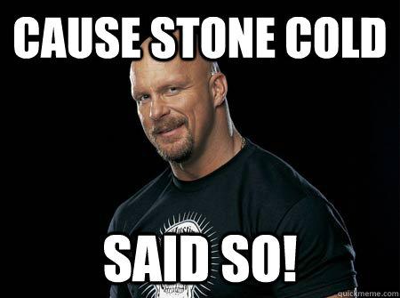 Cause Stone Cold Said Stone Cold Meme