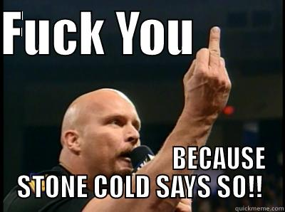 Fuck You Stone Cold Stone Cold Meme