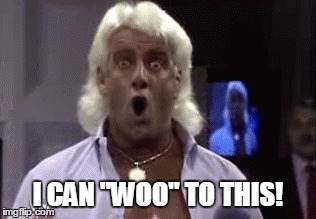 I Can Woo To This Ric Flair Meme