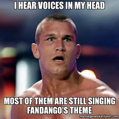 I Hear Voices In Randy Orton Meme