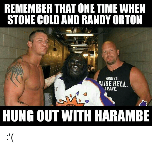 Remember That One Time Randy Orton Meme