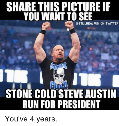 Share This Picture If Steve Austin Meme