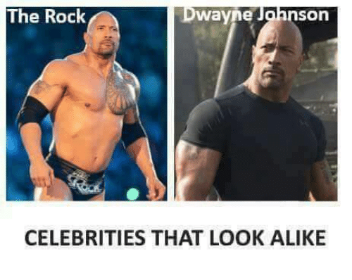The Rock Celebrities That The Rock Meme