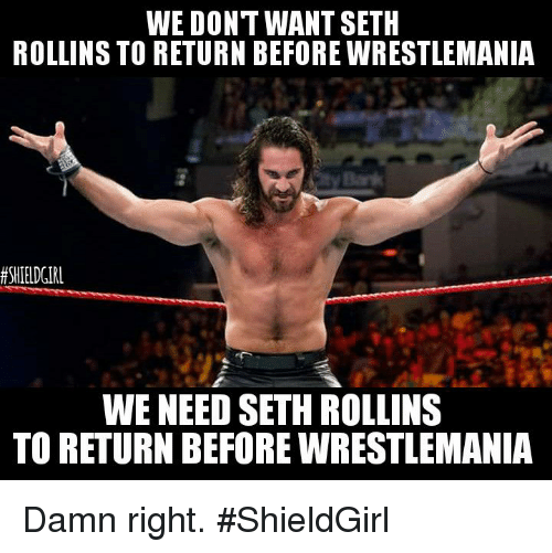 We Don't Want Seth Seth Rollins Meme