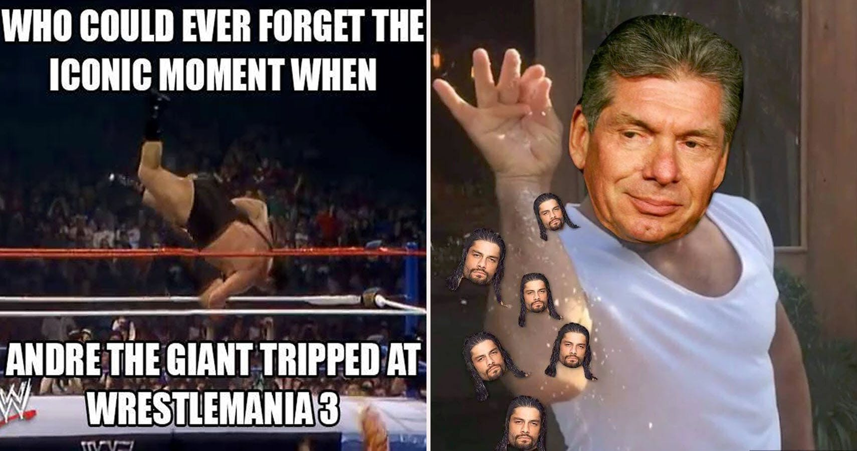 Who Could Ever Forget Wwe Memes