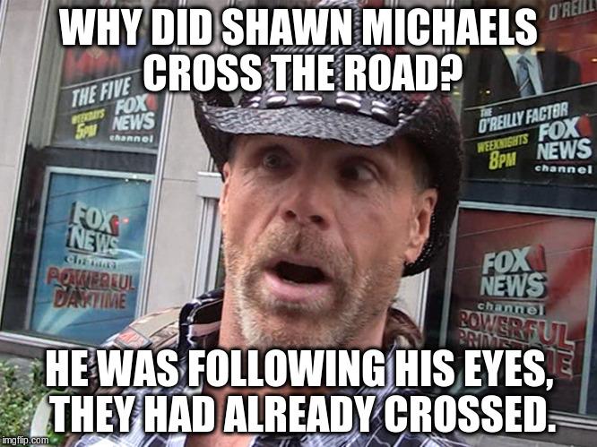 Why Did Shawn Michaels Shawn Michaels Meme