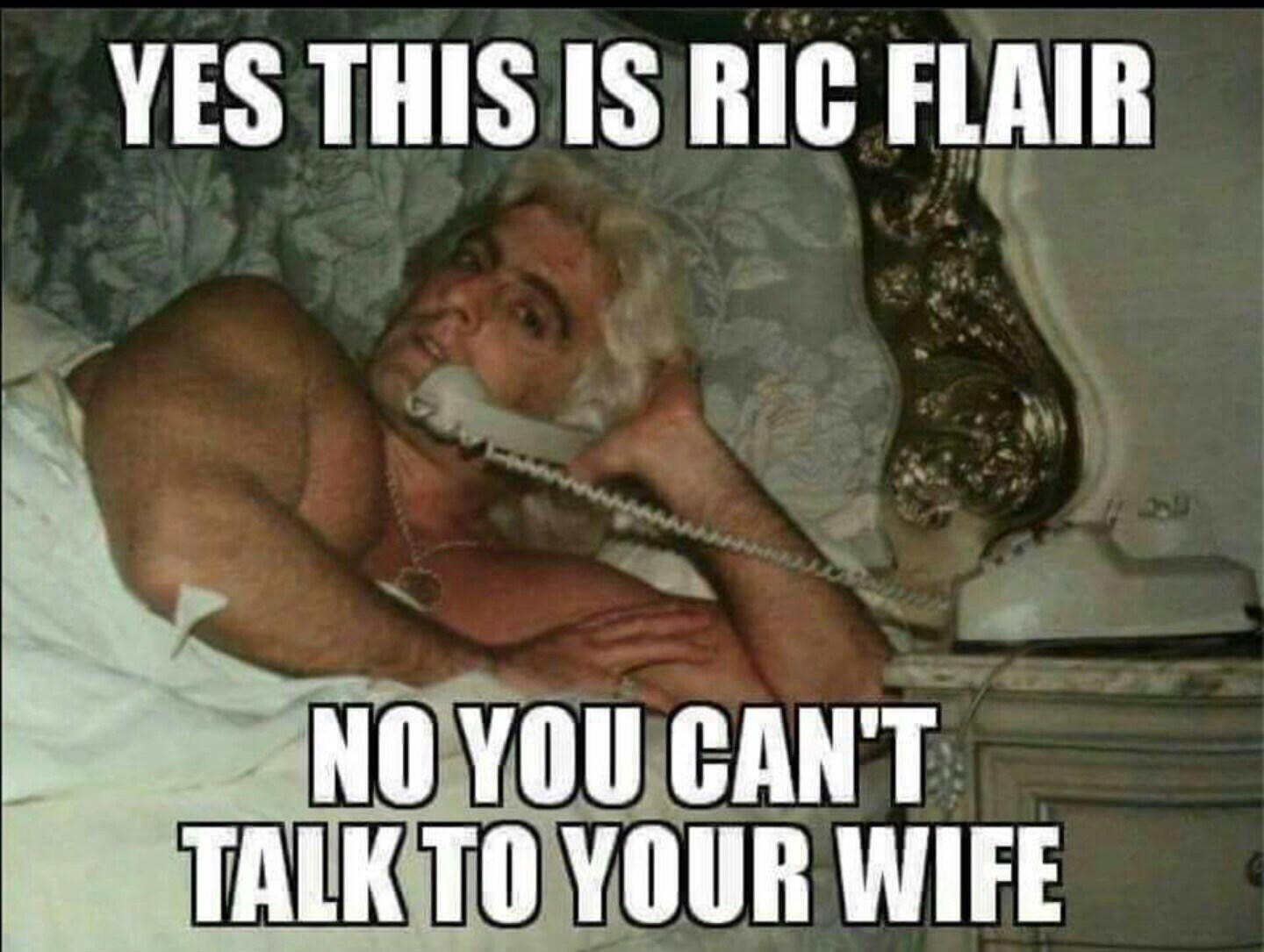 Yes This Is Ric Ric Flair Meme