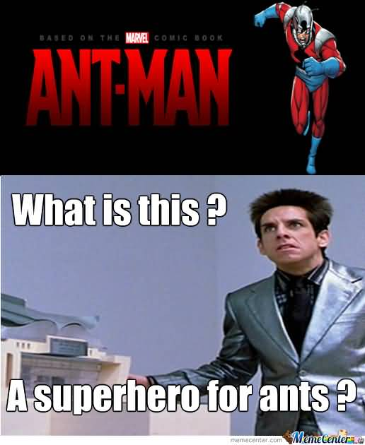 Ant Man What Is This Ant Man Meme