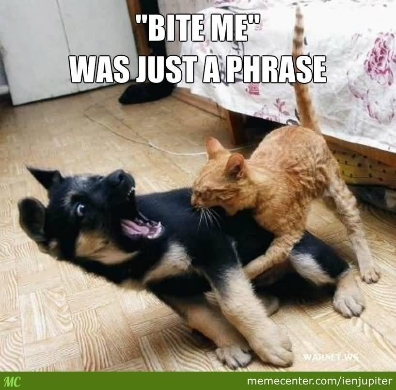 Bite Me Was Just Bite Me Meme