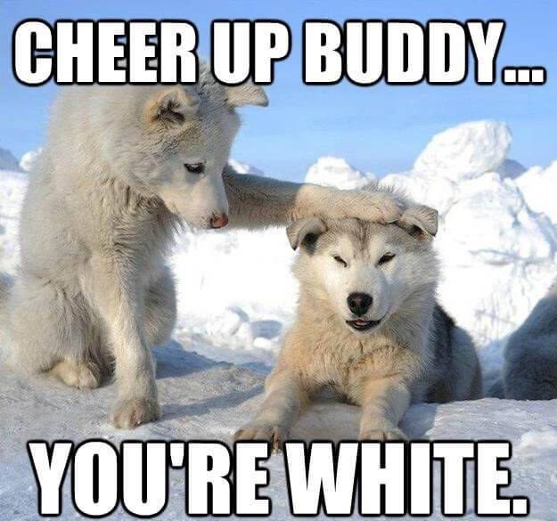 Cheer Up Buddy You're White Cheer Up Meme