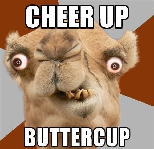 Cheer Up Buttercup Cheer Up Meme