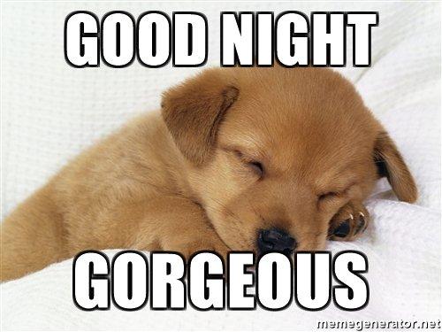 Good Night Gorgeous Good Night Meme