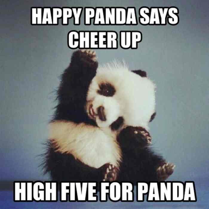 Happy Panda Says Cheer Up Cheer Up Meme