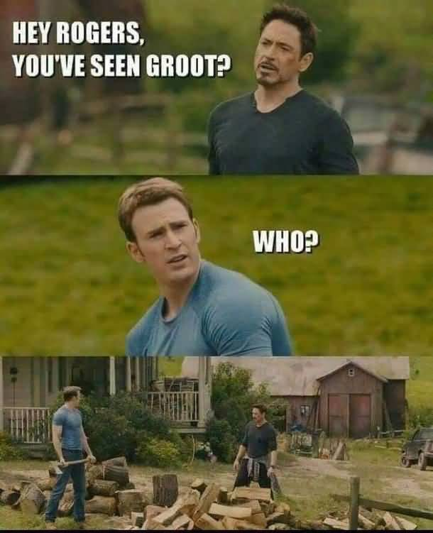 Hey Rogers You've Seen Groot Meme
