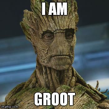 I Am Groot Groot Meme