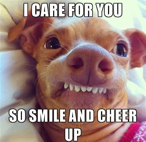 I Care For You Cheer Up Meme