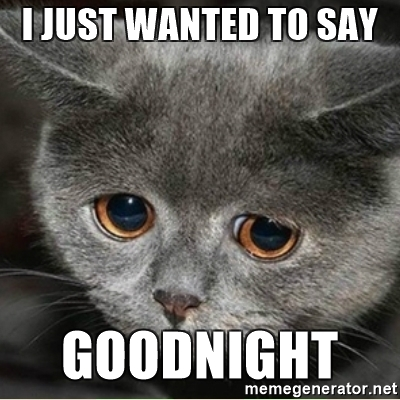 I Just Wanted To Say Good Night Meme