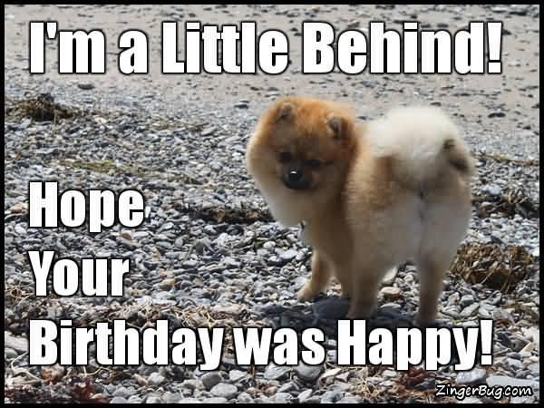 I'm A Little Behind! Happy Belated Birthday Meme