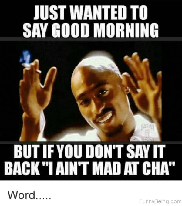Just Wanted To Say Good Good Morning Meme