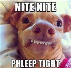 Nite Nite Phleep Tight Good Night Meme