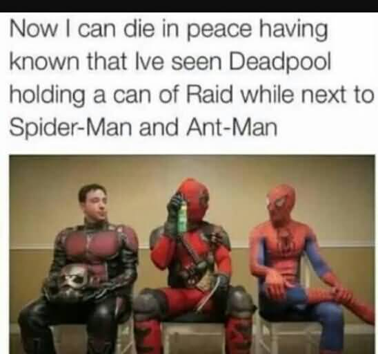 Now I Can Die In Ant Man Meme