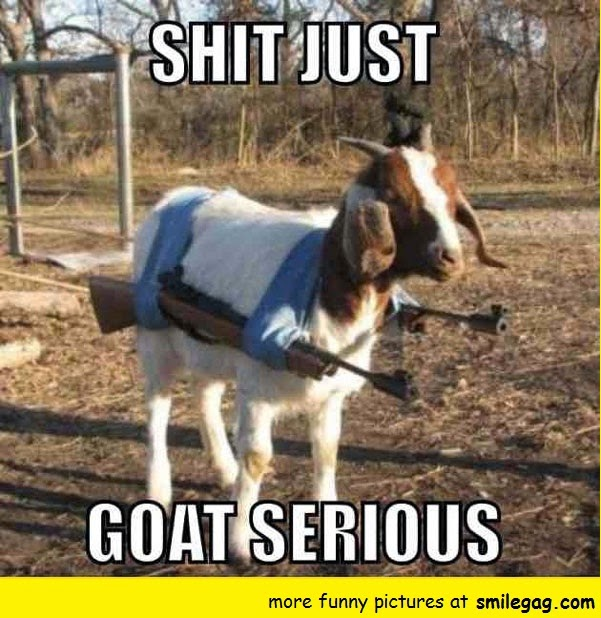 Shit Just Goat Serious Cheer Up Meme