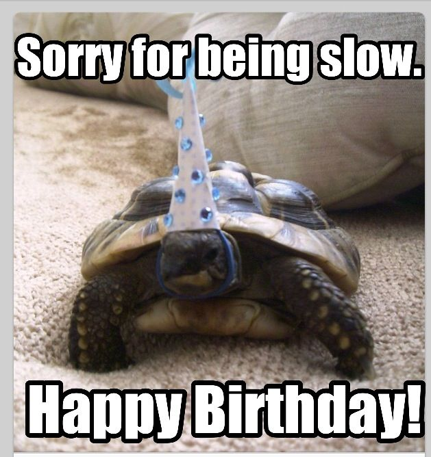 Sorry For Being Slow Happy Belated Birthday Meme