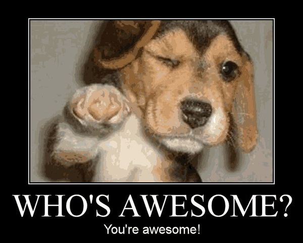 Who's Awesome You're Awesome Cheer Up Meme