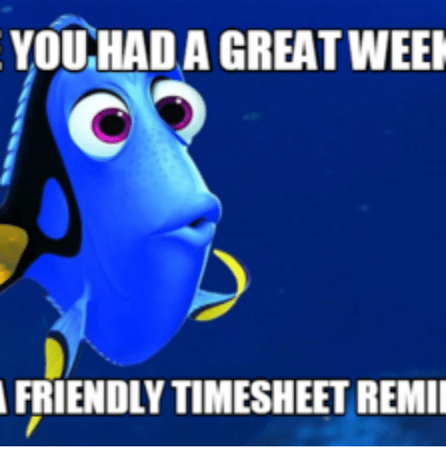 You Had A Great Week Good Week Meme