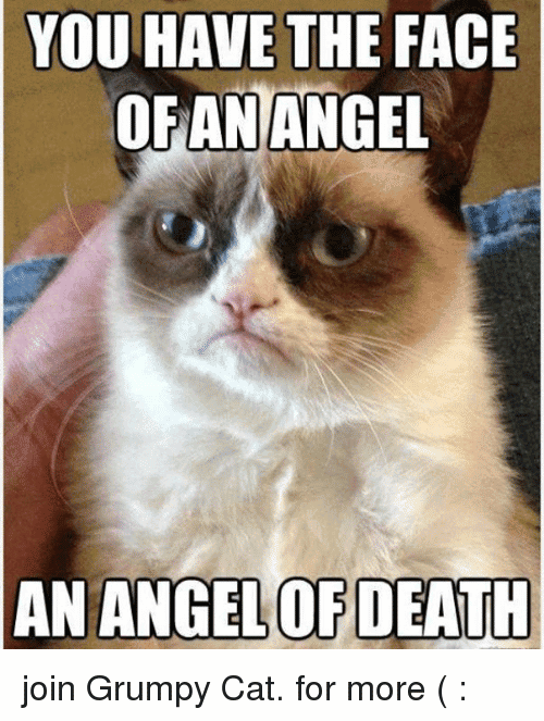 You Have The Face Angel Meme