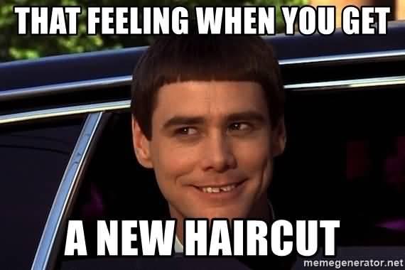 Fresh Haircut Meme That Feeling When You