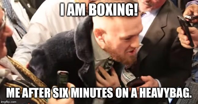 Me After Six Minutes Boxing Memes Mayweather