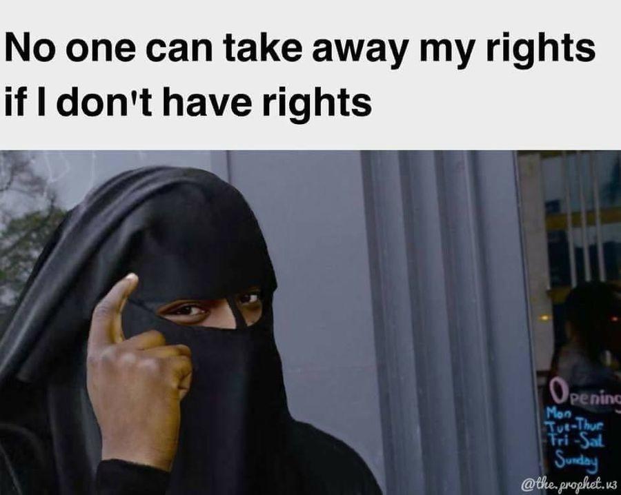 No One Can Take Burka Meme