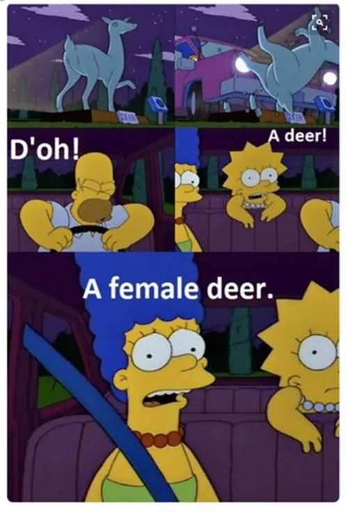D'oh A Deer A Female Cartoon Memes Facebook